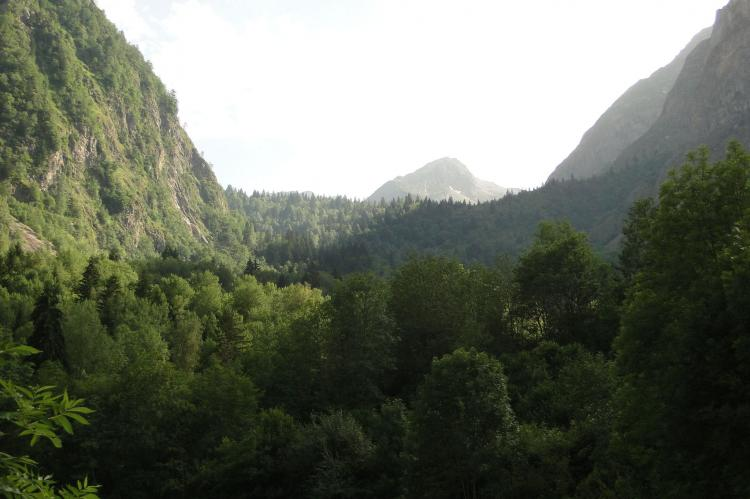 Holiday homeFrance - Northern Alps: Marianne  [10]