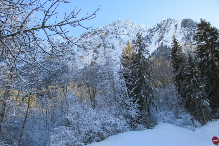 Holiday homeFrance - Northern Alps: Marianne  [29]