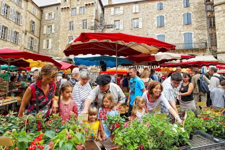 Holiday homeFrance - : Saint-Geniez-d'Olt  [24]