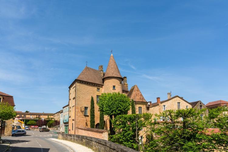 VakantiehuisFrankrijk - Dordogne: Maison de vacances Siorac en Périgord  [31]
