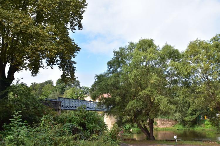 Holiday homeFrance - Dordogne: Maison de vacances Villefranche du Périgord Labard  [31]