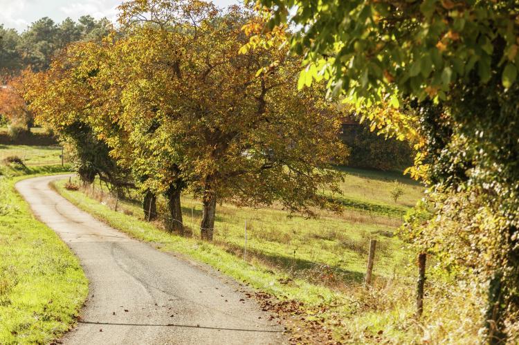 VakantiehuisFrankrijk - Dordogne: Maison de Galinier  [28]