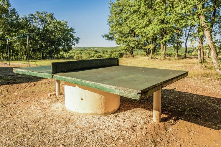 Holiday homeFrance - Dordogne: Salignac  [27]