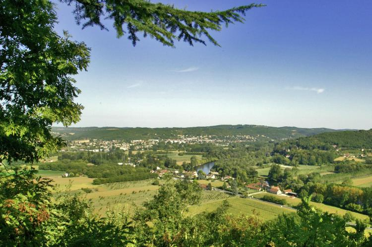 Holiday homeFrance - Dordogne: Salignac  [31]