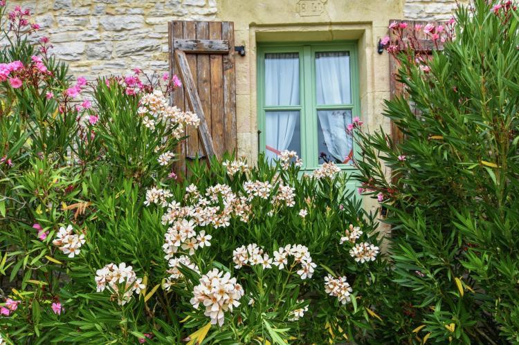 VakantiehuisFrankrijk - Midi-Pyreneeën: Maison de vacances  [25]