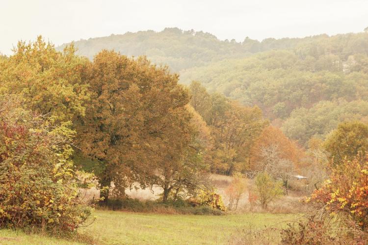 Holiday homeFrance - Mid-Pyrenees: Maison de vacances - PUY-L'EVÊQUE  [29]