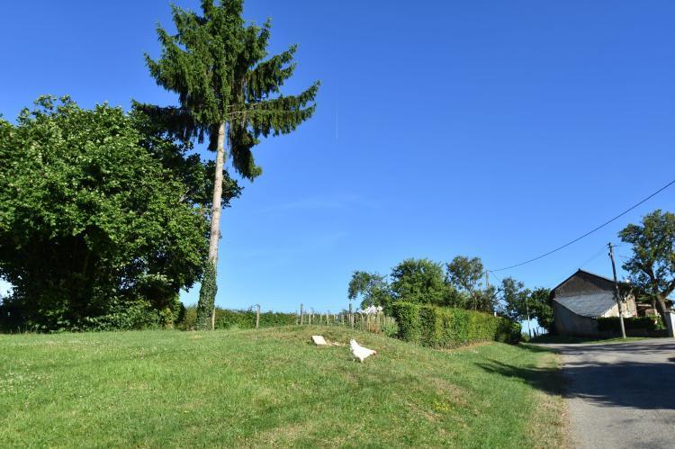 VakantiehuisFrankrijk - Bourgogne: Maison de vacances Tannay  [21]