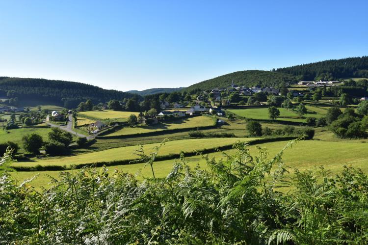 VakantiehuisFrankrijk - Bourgogne: Maison de vacances Tannay  [29]
