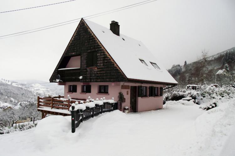 VakantiehuisFrankrijk - Elzas: Maison de vacances - NATZWILLER  [6]