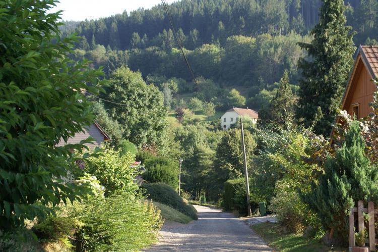 VakantiehuisFrankrijk - Elzas: Maison de vacances - NATZWILLER  [36]