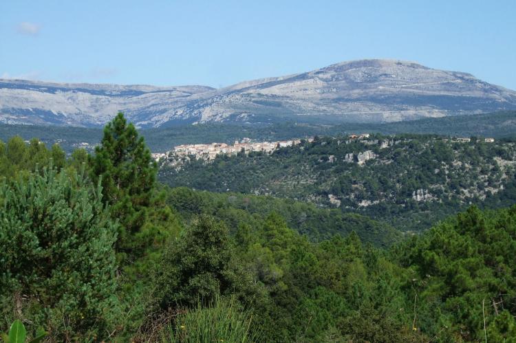 Holiday homeFrance - Provence-Alpes-Côte d'Azur: Verdi  [21]