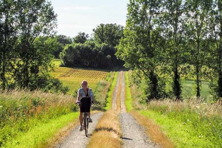Holiday homeFrance - Loire: La Tour  [24]