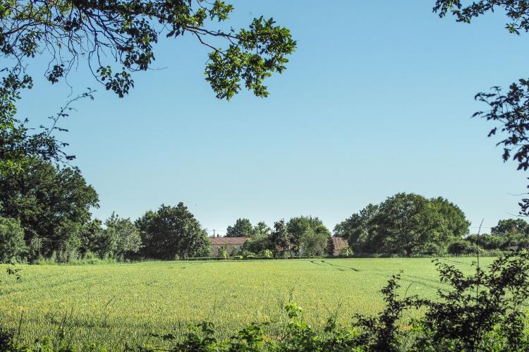 Holiday homeFrance - Loire: La Tour  [28]