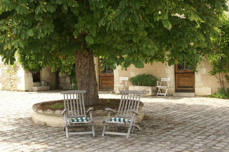 Holiday homeFrance - Poitou-Charentes: Manoir avec piscine privée  [34]