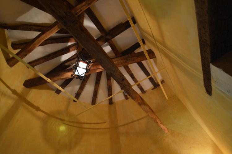Holiday homeFrance - Poitou-Charentes: Manoir avec piscine privée  [24]