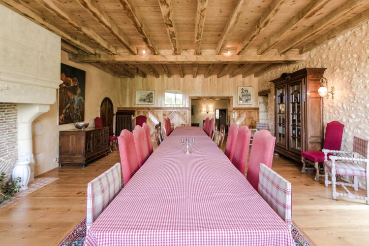 VakantiehuisFrankrijk - Dordogne: Manoir de la Baronie 21P  [12]