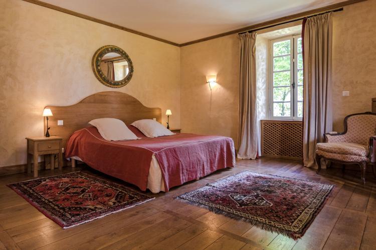 VakantiehuisFrankrijk - Dordogne: Manoir de la Baronie 21P  [17]