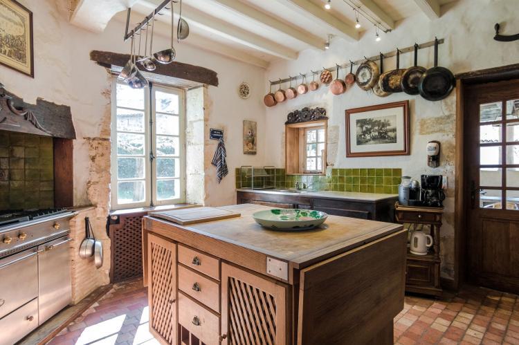 VakantiehuisFrankrijk - Dordogne: Manoir de la Baronie 21P  [14]