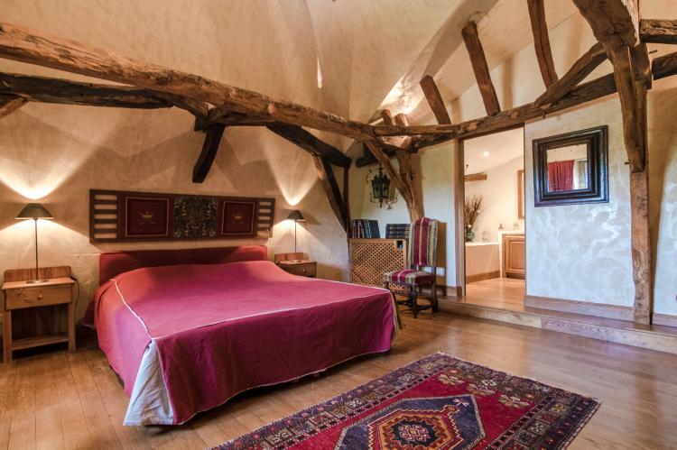 VakantiehuisFrankrijk - Dordogne: Manoir de la Baronie 21P  [25]