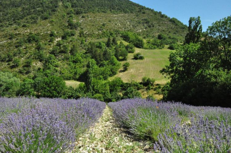 VakantiehuisFrankrijk - Ardèche: Villa - Ardeche  [36]