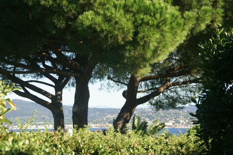Holiday homeFrance - Provence-Alpes-Côte d'Azur: Villa Saint Tropez  [7]
