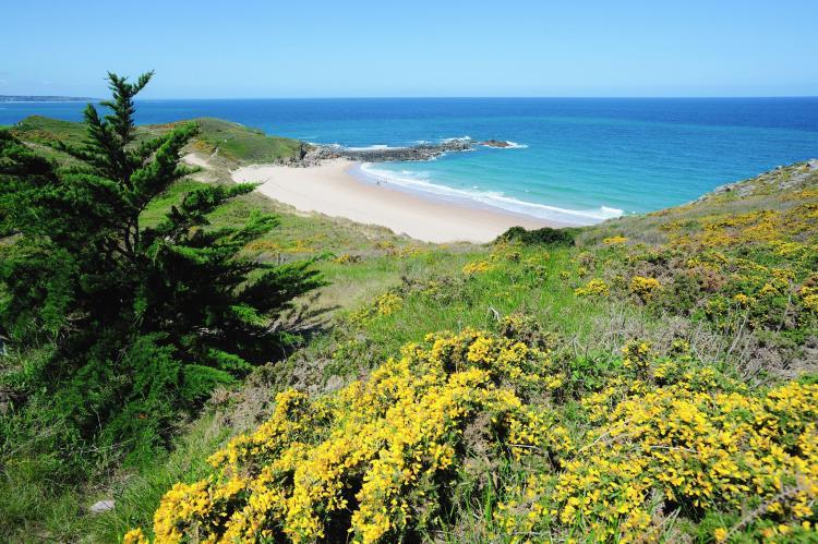 VakantiehuisFrankrijk - Bretagne: Maison de vacances Henansal  [24]