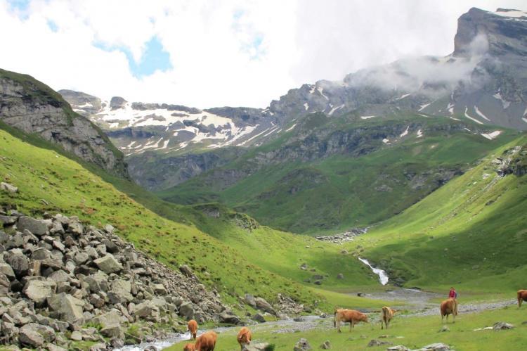 VakantiehuisFrankrijk - Midi-Pyreneeën: Gîte Marque  [35]