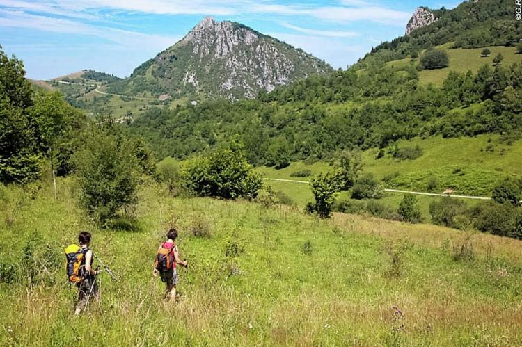 VakantiehuisFrankrijk - Midi-Pyreneeën: Gîte Marque  [40]