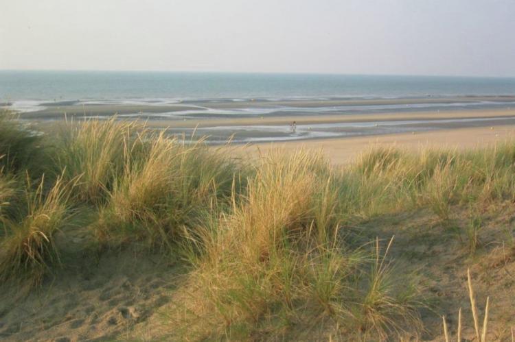 Holiday homeFrance - North/Street of Calais: Etoile de Mer 1  [26]
