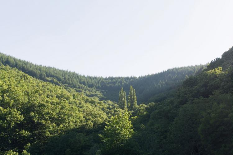 Holiday homeFrance - Ardèche: Maison de vacances -   JUVINAS  [20]