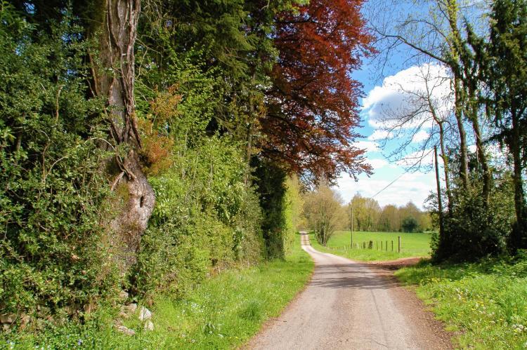 FerienhausFrankreich - Poitou-Charentes: Montizon  [30]