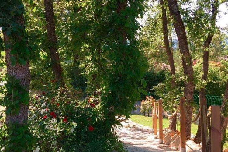 Holiday homeFrance - Provence-Alpes-Côte d'Azur: Villa Contempo 6  [39]