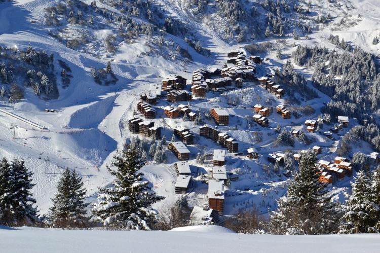 Holiday homeFrance - Northern Alps: Residence asphodeles  [11]
