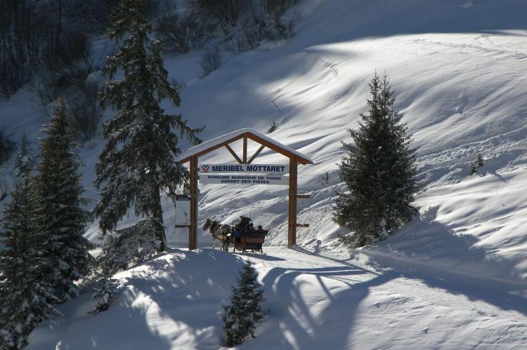Holiday homeFrance - Northern Alps: Residence asphodeles  [12]
