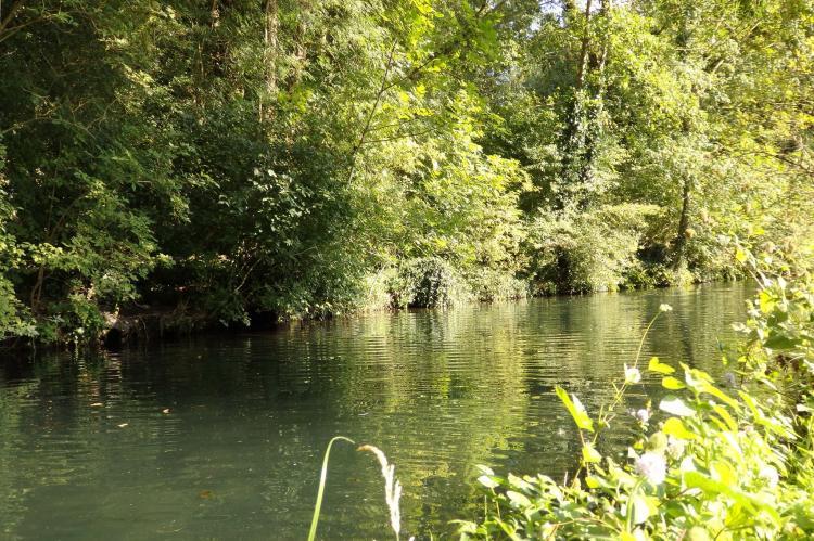 VakantiehuisFrankrijk - Poitou-Charentes: L?Atelier Mosaïque  [33]
