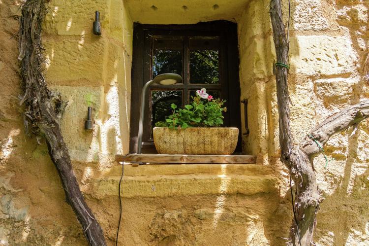 VakantiehuisFrankrijk - Dordogne: Les Raneaux 6P  [40]