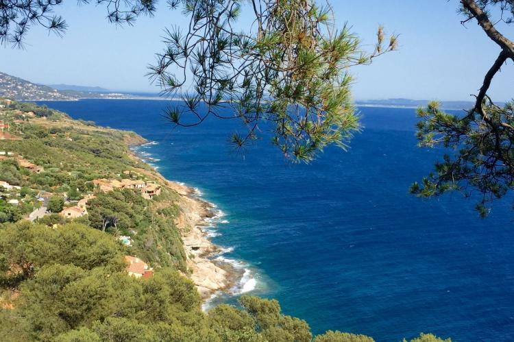 Holiday homeFrance - Provence-Alpes-Côte d'Azur: Villa Carqueiranne  [22]