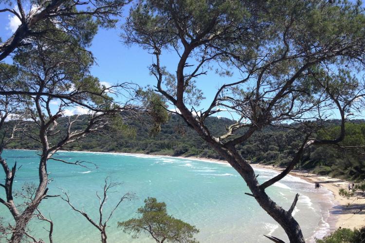 Holiday homeFrance - Provence-Alpes-Côte d'Azur: Villa Carqueiranne  [24]
