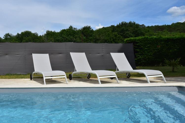 FerienhausFrankreich - Dordogne: Maison de vacances Saint Leon sur Vezere La Maleni  [39]