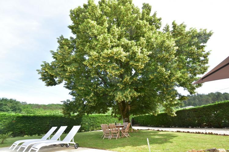 FerienhausFrankreich - Dordogne: Maison de vacances Saint Leon sur Vezere La Maleni  [40]