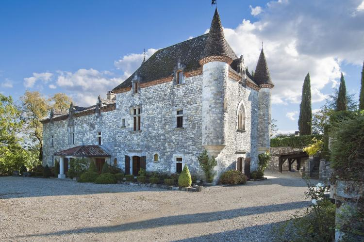VakantiehuisFrankrijk - Atlantische kust: Chateau Martinus  [1]