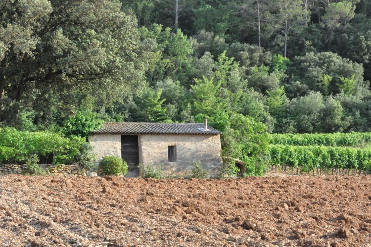 Holiday homeFrance - Provence-Alpes-Côte d'Azur: Les Oliviers  [30]