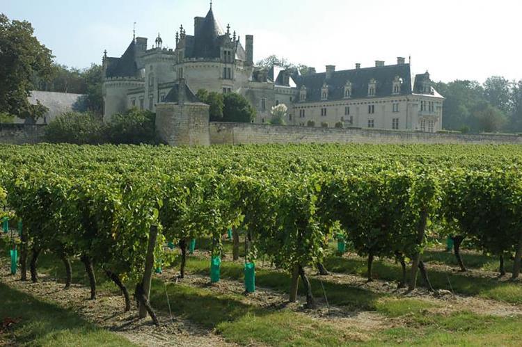 Holiday homeFrance - Centre: Gîte près des châteaux de la Loire  [23]