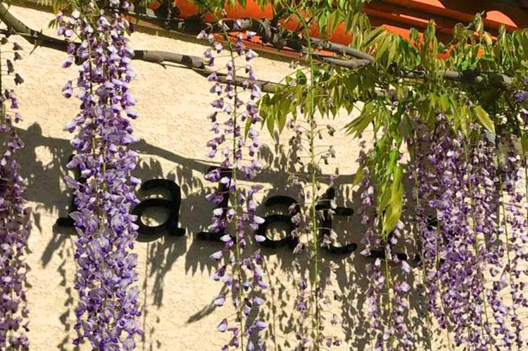 Holiday homeFrance - Languedoc-Roussillon: Villa Le Palatin  [36]
