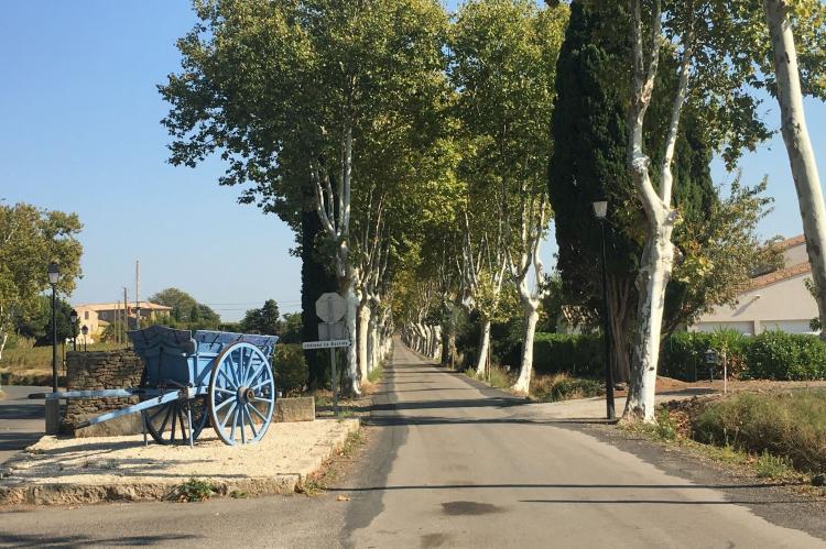 Holiday homeFrance - Languedoc-Roussillon: Villa Le Chardonnay  [22]