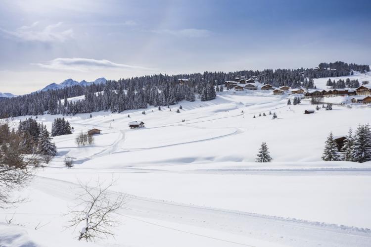 FerienhausFrankreich - Nördliche Alpen: Résidence Les Chalets des Cimes 3  [21]