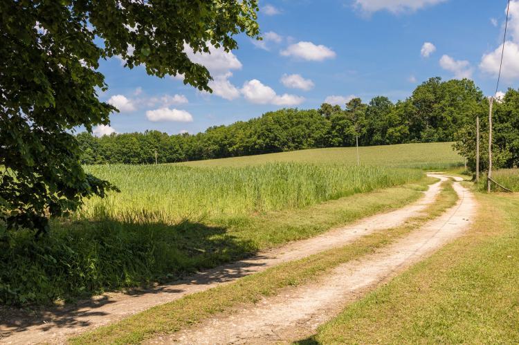 Holiday homeFrance - Dordogne: Le Tournant  [32]