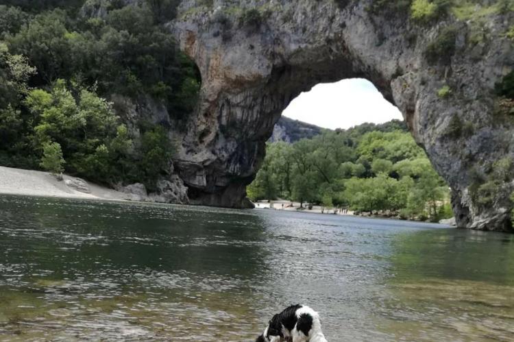 VakantiehuisFrankrijk - Ardèche: Mas du Pays des Cigales studio Les Papillons  [18]