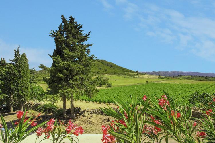 VakantiehuisFrankrijk - Languedoc-Roussillon: Gîte de luxe dans les vignes 1  [9]