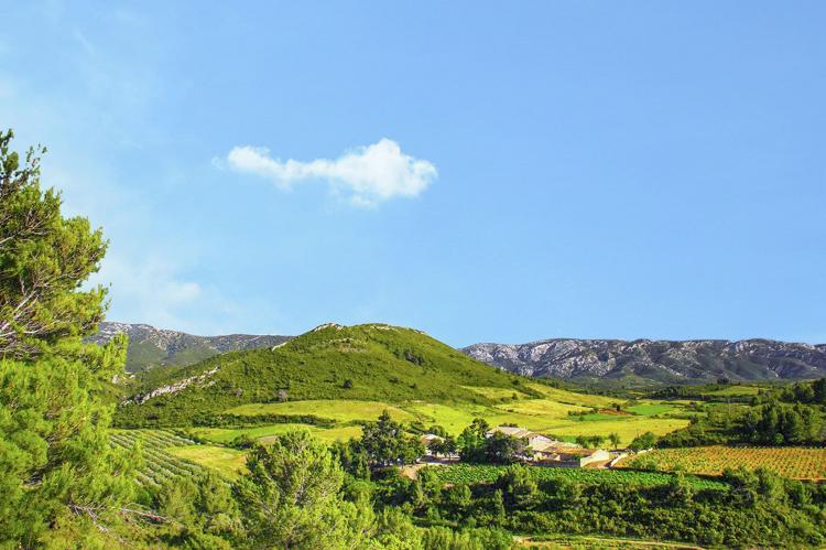 VakantiehuisFrankrijk - Languedoc-Roussillon: Gîte de luxe dans les vignes 4  [28]